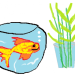 Keeping a goldfish in a bowl at the entrance or small bamboo shoots – Superstition I follow