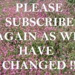 Changes in the email subscription of Pune School Reviews